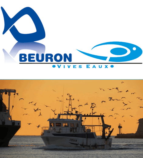 Beuron - Vivo Group