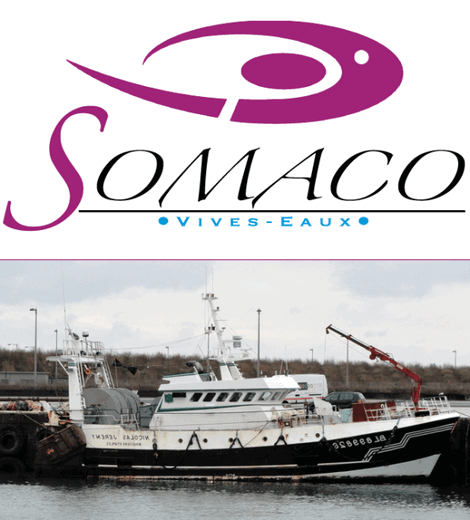 SOMACO - Vivo Group