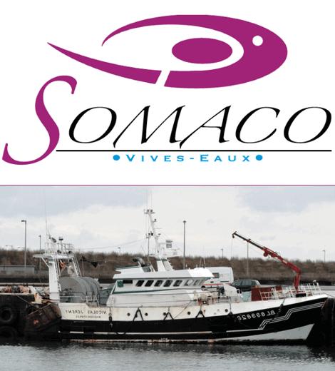 SOMACO - Vivo Group
