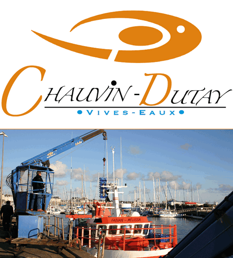 Chauvin Dutay - Vivo Group
