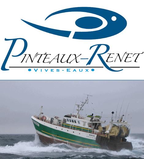 Pinteaux Renet - Vivo Group
