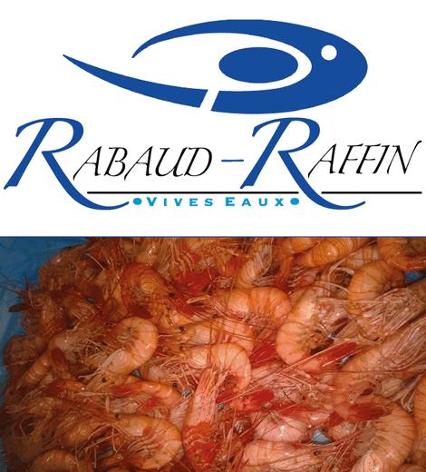 Rabaud Raffin - Vivo Group