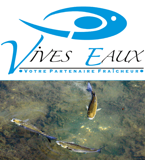 Vives Eaux Nantes - Vivo Group