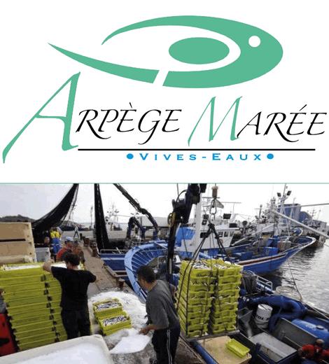 Arpège Marée - Vivo Group