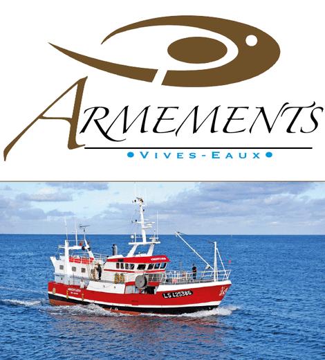 Armements - Vivo Group